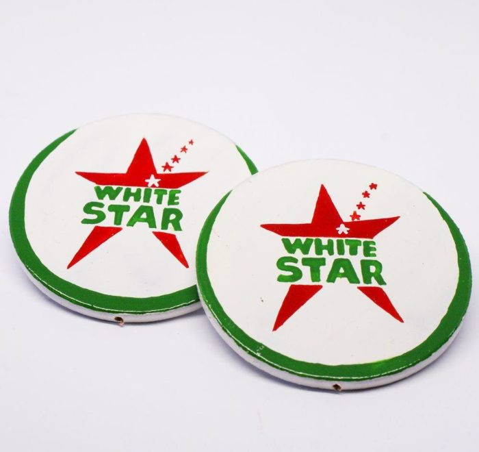 Scelo's Earrings : White Star